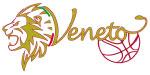Fip Veneto