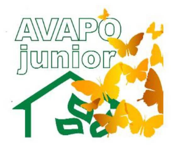 4nci sostiene Avapo Junior